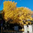 秋の一風景