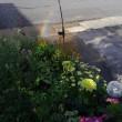 人工の虹🌈です🎵