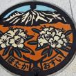 2018・信州旅 松本・安曇野で見つけたマンホール