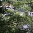 箱根・塔ノ沢で