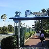 舞浜大橋を渡ってディズニーランドへ行く。