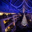 サッポロファクトリー 2017 クリスマスツリー点灯式