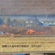 春の風物詩、相模川大島中州の野焼き!