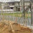 支柱完成        ナガイモ筒栽培