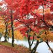 台風の中の観光 − 御射鹿池 → 蓼科湖