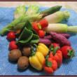 パンフラワー(野菜)