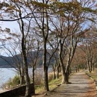 晩秋の箱根