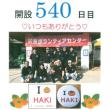 大津町ボランティアセンター+Ⅰ(ぷらす愛)【540日目】