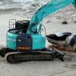 オーストラリアのビーチに埋めた巨大クジラ死骸が、サメを呼ぶと苦情!