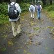 富士山すそ野一周ウォーキング(全17回);7回目(1);勢子辻から歩き出す