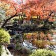 日比谷公園の紅葉・・1