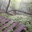 鳥居峠から長七郎山