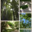 夏の鎌倉散策