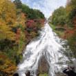 奥日光の紅葉 写真 竜頭の滝 などを
