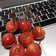 リンゴとサクランボ!