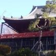 高校時代の同窓会で上野、御徒町近辺を歩いて来ました。
