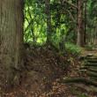 古四王神社の石段