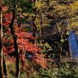 嵐山渓谷の紅葉まつり 2017 その1