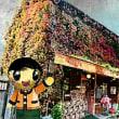秋の成城の紅葉