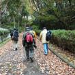 大蓮公園で冬鳥観察