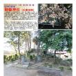 富士塚 その34 御嶽神社 (久喜市南)