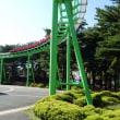 国営ひたち海浜公園 コキア(ホウキグサ)
