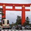 京都の桜 第1弾 ①