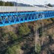 2017年3月偕楽園と竜神大吊り橋と道の駅常陸太田と牛久大仏