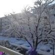 雪かきに時の移ろいを見る