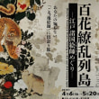 332.千葉市美術館 『百花繚乱列島』展を観る。