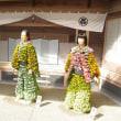 湯島神社 菊まつり
