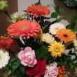 玄関のお花たち、今日も沢山の人をお出迎え
