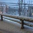 想定外の大雪