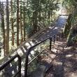 昨日むかし道を紅葉ハイキング
