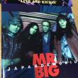 MR.BIG 1994年 初の札幌公演(月寒グリーンドーム)