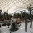 蘇州 大陽山植物園
