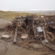 荒れる白子海岸