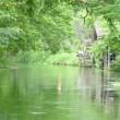 初夏の信州・・・安曇野の原風景・・・黒沢映画「夢・・・水車のある村」の舞台