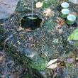 名水猿庫です,リニアが地下トンネル明けると水が出なくなる可能性有り