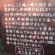 伊豆高原 駅の雛飾り 城ヶ崎海岸