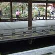 冬の京都観光ー閻魔大王編ー3