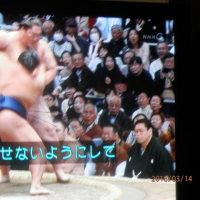 鶴竜4連勝