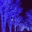 青の洞窟・渋谷・・4