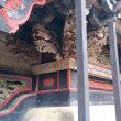 群馬県昭和村・さくらんぼ狩りと榛名神社と砂防堰堤に行ってきた