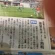 伊勢崎市少女サッカ-大会(上毛新聞)