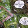 工場生産野菜