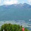 甲州・信州の国境・・・100万本のスズランの山・・・入笠山へ