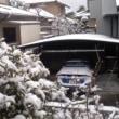 雪(1月27日 日曜日)