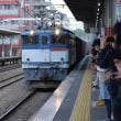 直流電気機関車 EF65-2081【武蔵野線:西国分寺駅】 2018.APR(25)撮り鉄 車両鉄