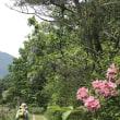 岡山県の山 蒜山へ